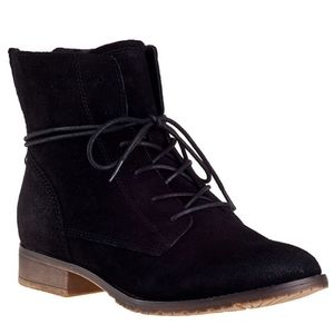 Steve Madden Rawlings Suede Leather Lace Up Ankle Boots